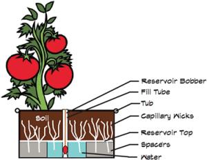 Farm Tub Diagram
